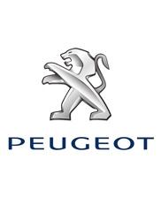 Peugeot auto onderdelen gebruikt occasions