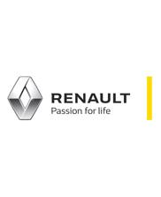 Renault auto onderdelen gebruikt occasions